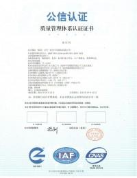 Международный сертификат 4